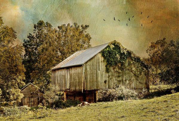 Farm Art Print featuring the photograph Big Barn Little Barn by Kathy Jennings