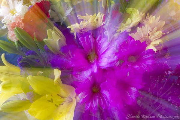Flower Art Print featuring the photograph Bloom Zoom by Charles Warren