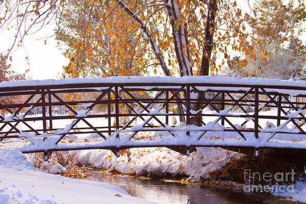 Autumn Art Print featuring the photograph Bridge Over Icy Waters by James BO Insogna