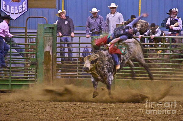 Photography Art Print featuring the photograph Bull Rider 1 by Sean Griffin