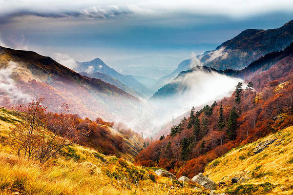 Balkan Mountains Print featuring the photograph Central Balkan National Park by Evgeni Dinev