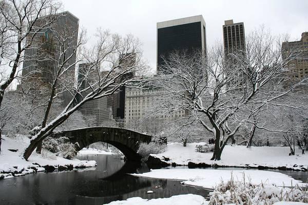 Central Park Art Print featuring the photograph Central Park by Marcel Van Gemert