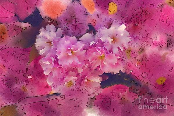 Cherry Blossoms Art Print featuring the photograph Cherry Blossom Time by Marion Headrick