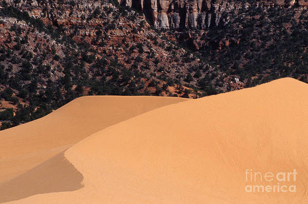 Bronstein Art Print featuring the photograph Coral Pink Sand Dunes by Sandra Bronstein