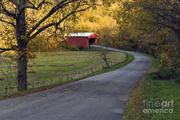 Road Art Print featuring the photograph Country Lane - D007732 by Daniel Dempster