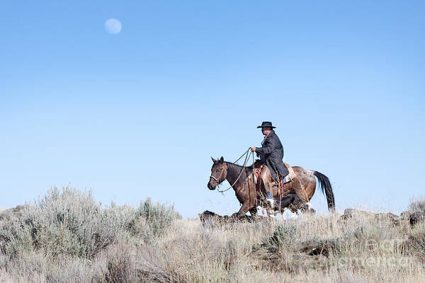 Cowboy Art Print featuring the photograph Cowboy Desert Moon by Cindy Singleton