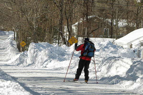 Winter Art Print featuring the photograph Cross Country Skier On Cape Cod by Matt Suess
