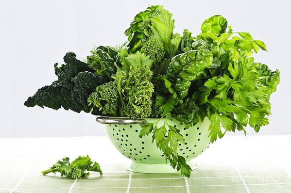 Dark Green Print featuring the photograph Dark Green Leafy Vegetables In Colander by Elena Elisseeva