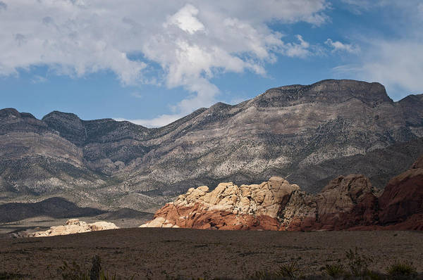 Red Rock Canyon Art Print featuring the photograph Desert Sunlight by Daniel Milligan