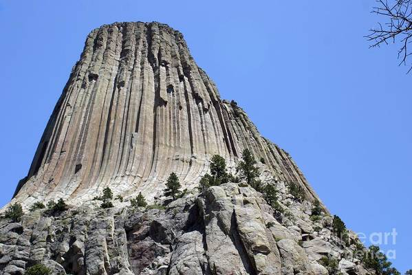 Devil's Tower Art Print featuring the photograph Devil's Tower Full View by Living Color Photography Lorraine Lynch