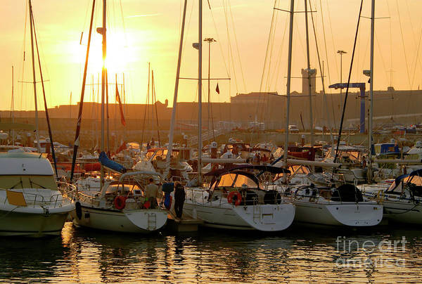 Anchor Art Print featuring the photograph Docked Yachts by Carlos Caetano