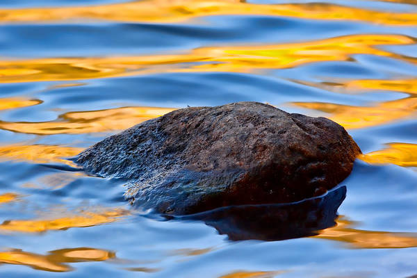 Reflection Art Print featuring the photograph Elements by Jennifer Grover