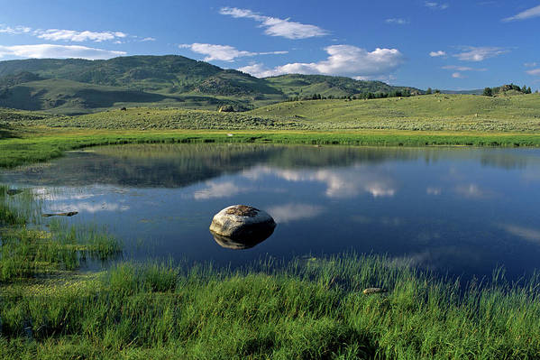 Horizontal Print featuring the photograph Erratic Boulder And Small Pond In Lamar Valley by Altrendo Nature