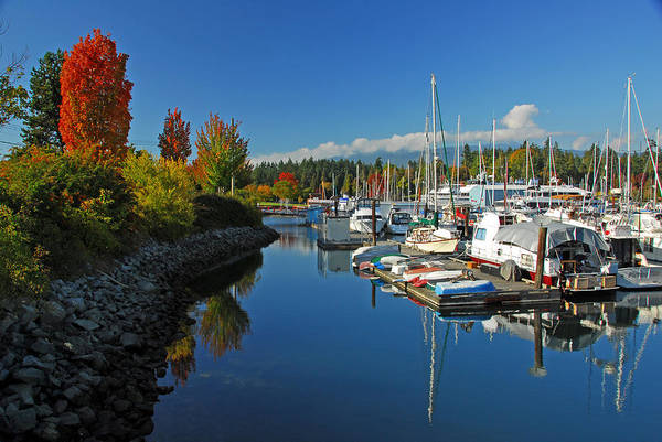 Harbors Art Print featuring the photograph Fall Colors At English Bay by Lynn Bauer