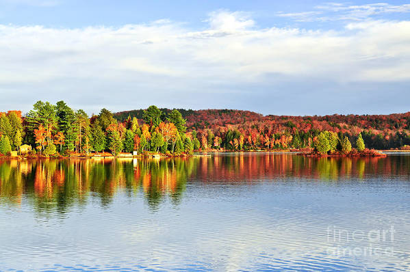 Lake Art Print featuring the photograph Fall Forest Reflections by Elena Elisseeva