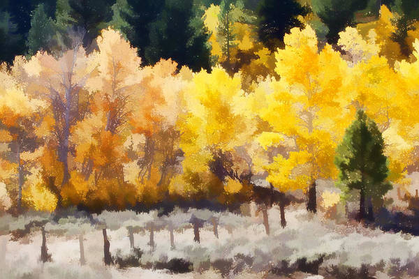 Aspen Art Print featuring the photograph Fall In The Sierra by Carol Leigh