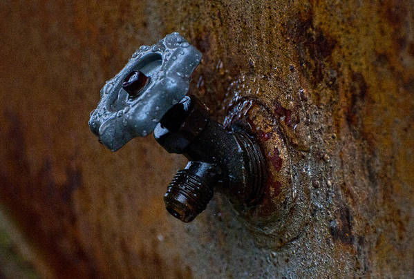 Faucet Art Print featuring the photograph Faucet by Wilma Birdwell