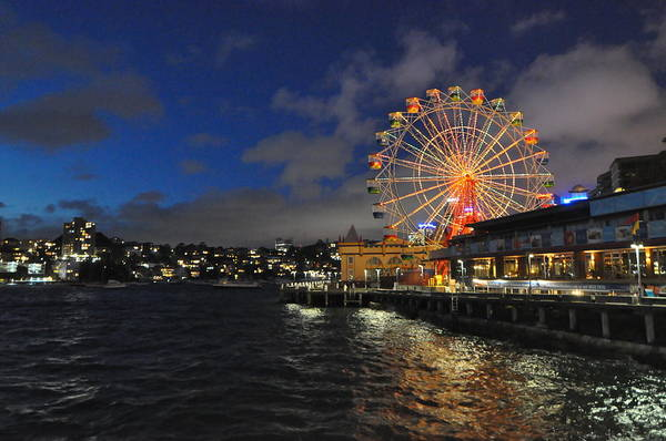 Sydney Print featuring the pyrography ferris wheel at night in Sydney Harbour by Jacques Van Niekerk