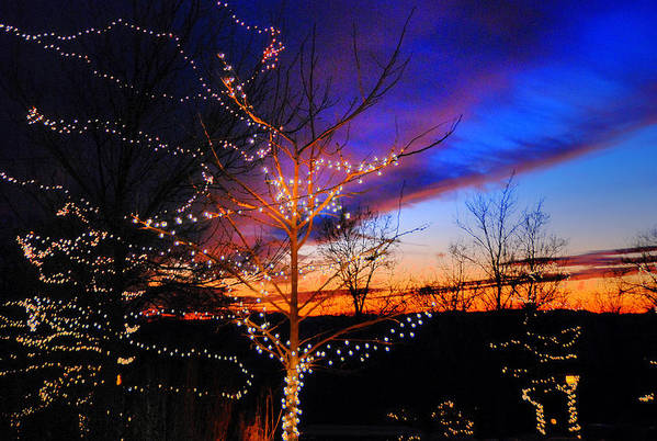 Holidays Art Print featuring the photograph Festive Lights by Cecile Brion