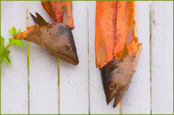 Fish Art Print featuring the photograph Fish Heads by Steve Zimic