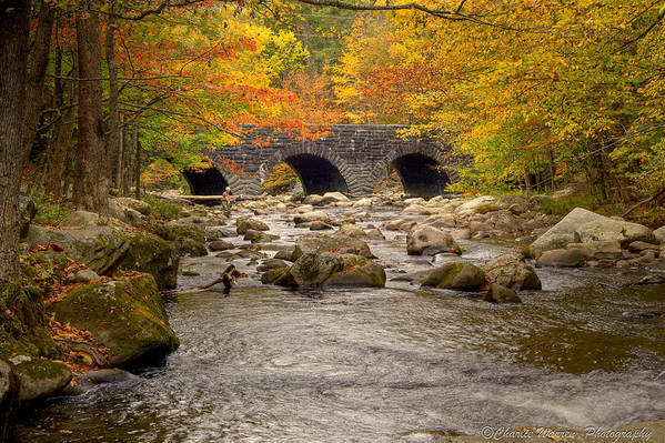 Stream Art Print featuring the photograph Fishing Bridge I by Charles Warren