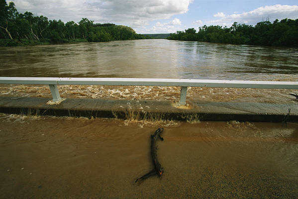 Floods Art Print featuring the photograph Flood Waters Rise To Meet A Bridge by Randy Olson