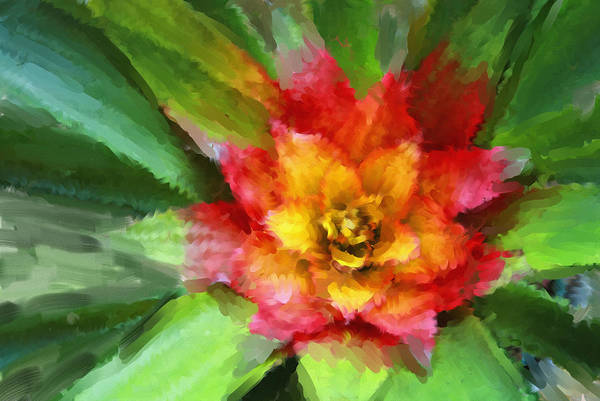 Flower Art Print featuring the painting Flower Of The Tropics by Carolyn Whitaker