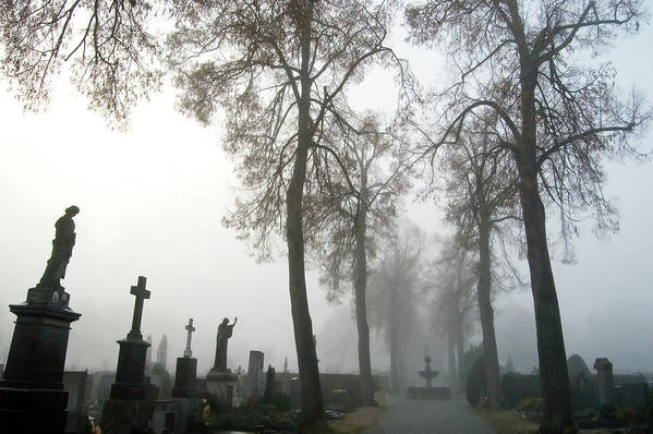 Graveyard Art Print featuring the photograph Foggy Cemetery by Mary Lane