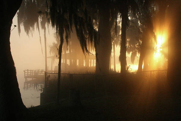 Landscape Art Print featuring the photograph Foggy Sunrise 2 by William McEachern