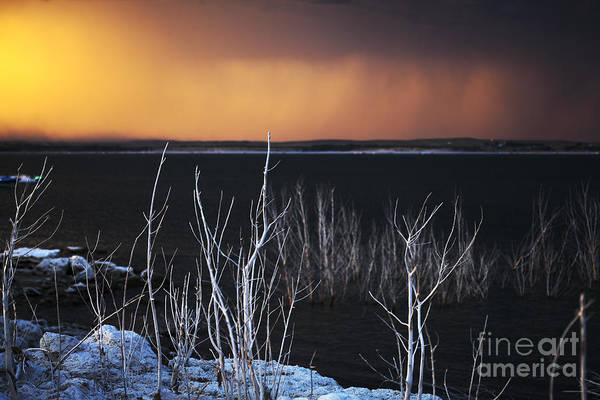 Lake Art Print featuring the photograph Ghostly Tree Skeletons And The Smoke From Fire by Loren Rye