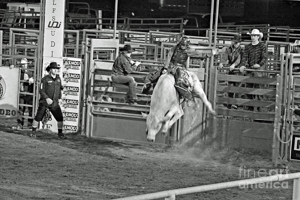 Bull Riding Art Print featuring the photograph Going For 8 by Shawn Naranjo