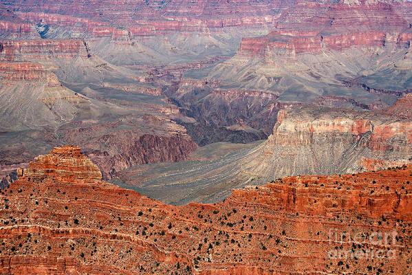 Grand Canyon Print featuring the photograph Grand Canyon Crimson Ridge by Michael Kirsh