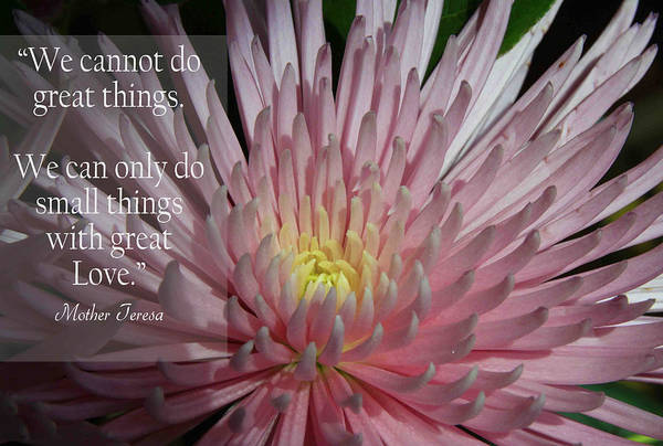 Quotes Art Print featuring the photograph Great Things by Dana Kern