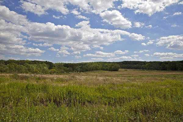 Bunker Hill Art Print featuring the photograph Griggstown Native Grassland Preserve by David Letts
