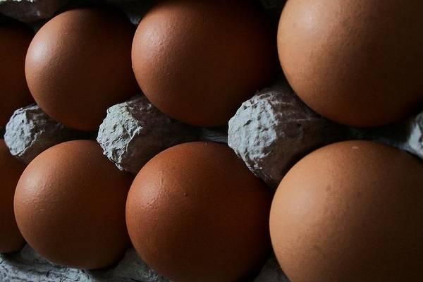 Eggs Art Print featuring the digital art Half Dozen by Wide Awake Arts