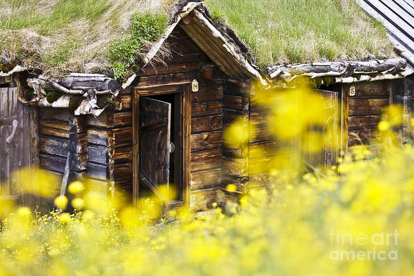 Europe Art Print featuring the photograph House Behind Yellow Flowers by Heiko Koehrer-Wagner