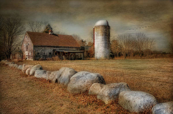 Rustic Art Print featuring the photograph I Remember by Robin-Lee Vieira