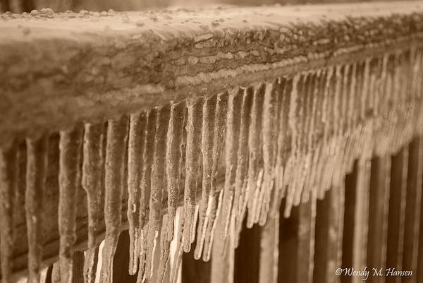 Ice Art Print featuring the photograph Icy Rail by Wendy Hansen-Penman