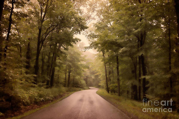 Road Art Print featuring the photograph Into The Mists by Lois Bryan