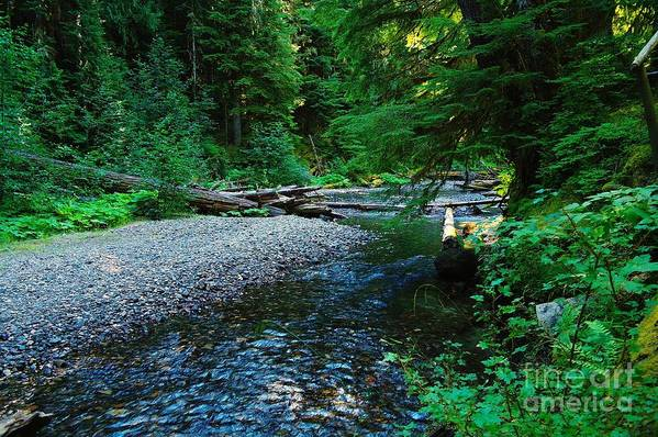 Water Art Print featuring the photograph Iron Creek by Jeff Swan