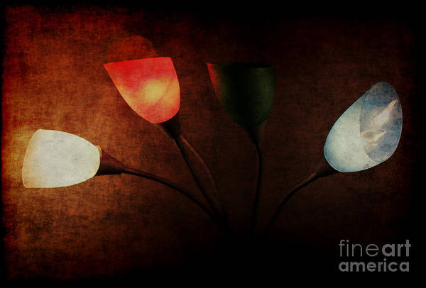 Lamp Art Print featuring the photograph Lamp by Billie-Jo Miller