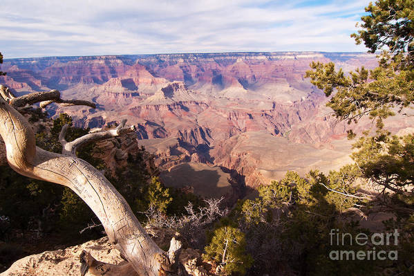 Grand Canyon Art Print featuring the photograph Late Afternoon At The South Rim by Bob and Nancy Kendrick
