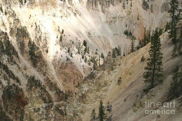 Grand Canyon Art Print featuring the photograph Light And Shadows In The Grand Canyon In Yellowstone by Living Color Photography Lorraine Lynch