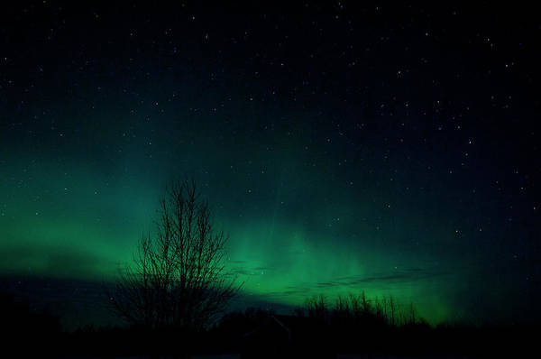 Aurora Borealis Art Print featuring the photograph Like Firefly's In The Sky by Marie Fierek