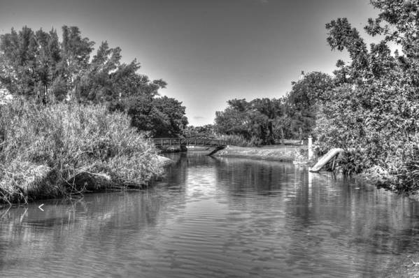 River Art Print featuring the photograph Little River by Armando Perez
