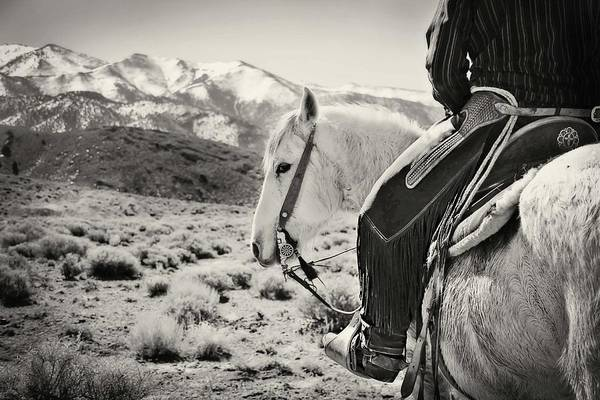 Grey Mustang Print featuring the photograph Lookin Back by Megan Chambers