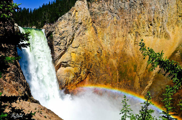 Yellowstone National Park Art Print featuring the photograph Lower Falls Rainbow Le by Greg Norrell