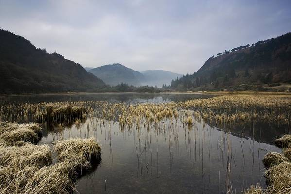 County Wicklow Art Print featuring the photograph Lower Lake, Glendalough, County by Peter McCabe