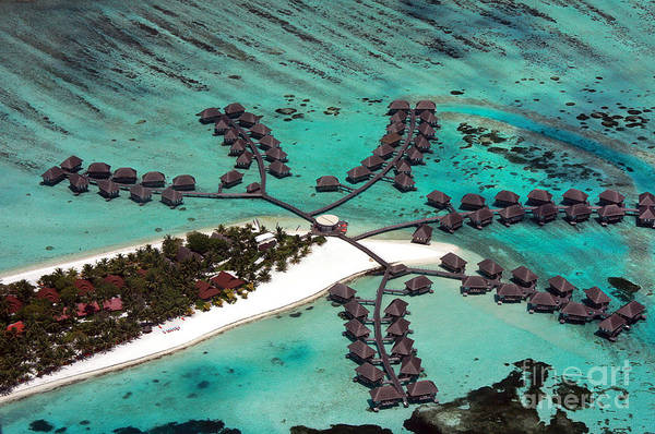 Above Art Print featuring the photograph Maldives Aerial by Jane Rix