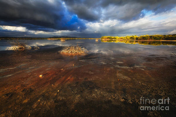 Las Salinas Art Print featuring the photograph Marsh Landscape Of Cabo Rojo by George Oze